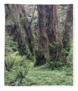 Quinault Rain Forest 3156 Fleece Blanket
