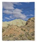 Rainbow Basin Fleece Blanket