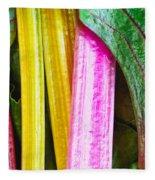 Rainbow Chard Fleece Blanket