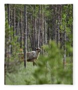 Rare And Wild. Finnish Forest Reindeer Fleece Blanket