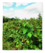 Raspberry Fields 2  Fleece Blanket