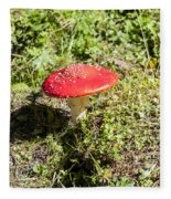 Red And White Potted Toadstool Fleece Blanket
