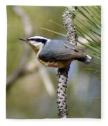 Red Breasted Nuthatch Fleece Blanket