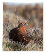 Red Grouse Fleece Blanket
