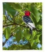 Red-headed Woodpecker Fleece Blanket