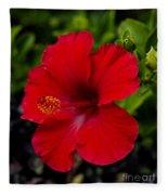 Red Hibiscus - Kauai Fleece Blanket