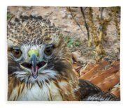 Red-tailed Hawk -5 Fleece Blanket