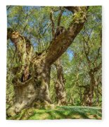 Relaxing Planes Trees Arbor Fleece Blanket