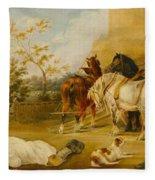 Resting Travelers Fleece Blanket