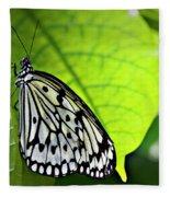 Rice Paper Butterfly 6 Fleece Blanket