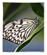 Rice Paper Butterfly 8 Fleece Blanket