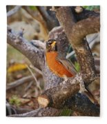Robin On Cut Down Tree Branch Fleece Blanket