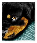 Rotty Fleece Blanket