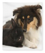 Rough Collie With Black Rabbit Fleece Blanket