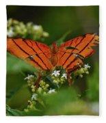 Ruddy Daggerwing Butterfly Fleece Blanket