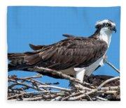 Ruffled Feathers Fleece Blanket