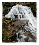 Salt Springs Waterfall Fleece Blanket