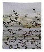 Sand Pipers In Flight Fleece Blanket
