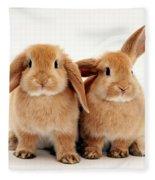 Sandy Lop Rabbits Fleece Blanket