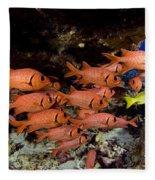 Shoulderbar Soldierfish Fleece Blanket