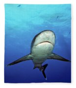 Silvertip Shark Fleece Blanket
