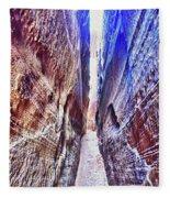 Slot Canyon Of Canyon De Chelly, Fleece Blanket