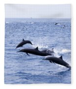 Spinner Dolphins Fleece Blanket