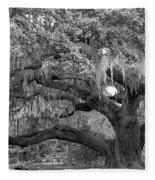 Sprawling Live Oak Fleece Blanket