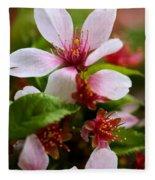 Spring Cherry Blossoms Fleece Blanket
