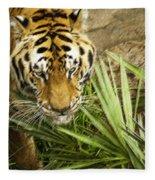 Stalking Tiger Fleece Blanket