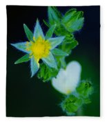 Starflower Fleece Blanket