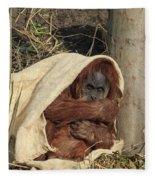 Sumatran Orangutang - Fleece Blanket