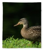 Summer Nature Fleece Blanket