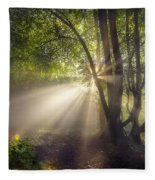 Sunbeam Fleece Blanket