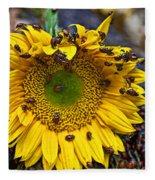 Sunflower Covered In Ladybugs Fleece Blanket