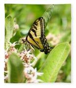 Swallowtail  Fleece Blanket