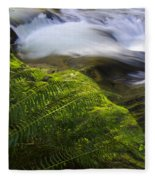 Sweet Creek Oregon 11 Fleece Blanket