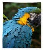 The Blue Fleece Blanket