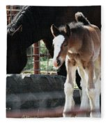 The Flying Colt With The Big White Feet Fleece Blanket