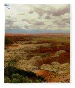 Viewpoint In The Painted Desert Fleece Blanket