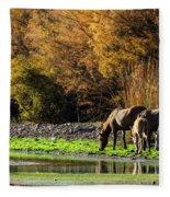 The Salt River Wild Horses  Fleece Blanket