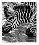 Thirsty Zebras Fleece Blanket