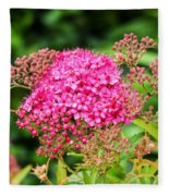 Tiny Pink Spirea Flowers Fleece Blanket