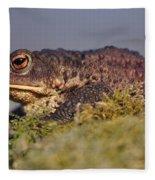 Toad Fleece Blanket