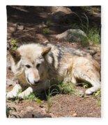Tour Of Rocky Mountain Wildlife Foundation Fleece Blanket