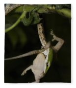 Tree Snake Eating Gecko Fleece Blanket
