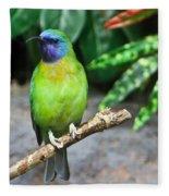 Tropical Bird Fleece Blanket