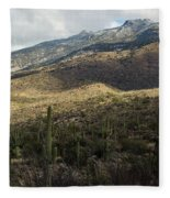 Tucson Landscape Fleece Blanket