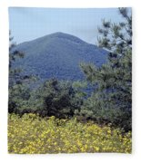 143419-turk Mountain Overlook  Fleece Blanket
