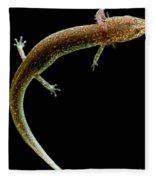 Valdina Farms Salamander Fleece Blanket